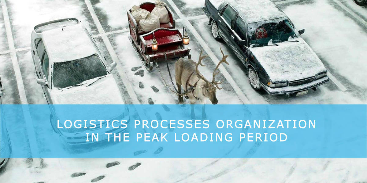 Logistics processes organization in the peak loading period