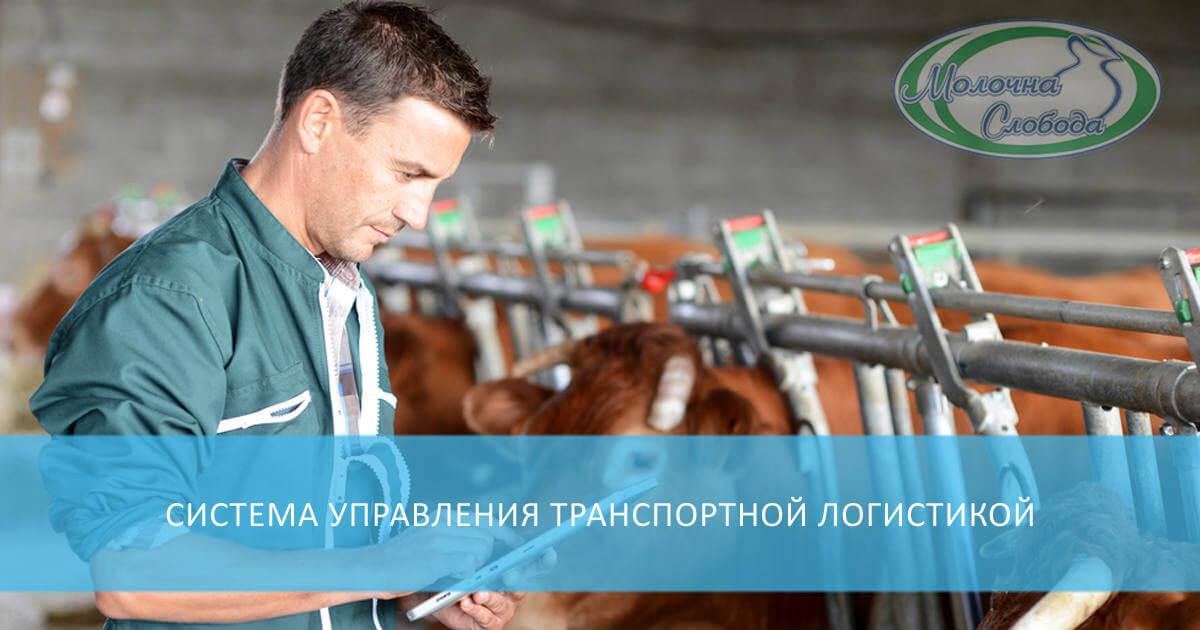 Система управления транспортной логистикой для молочника